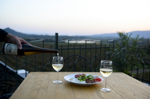 Wine adventure in the Badacsony wine region - Hunguest Hotel Pelion - Tapolca