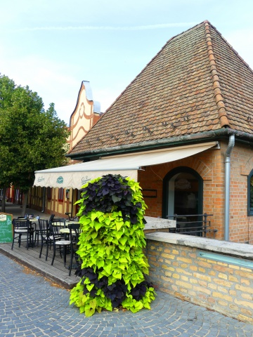 Gyula, the historic town - Hunguest Hotel Erkel - Gyula